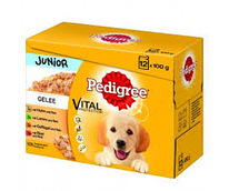 Pedigree Gelee Junior